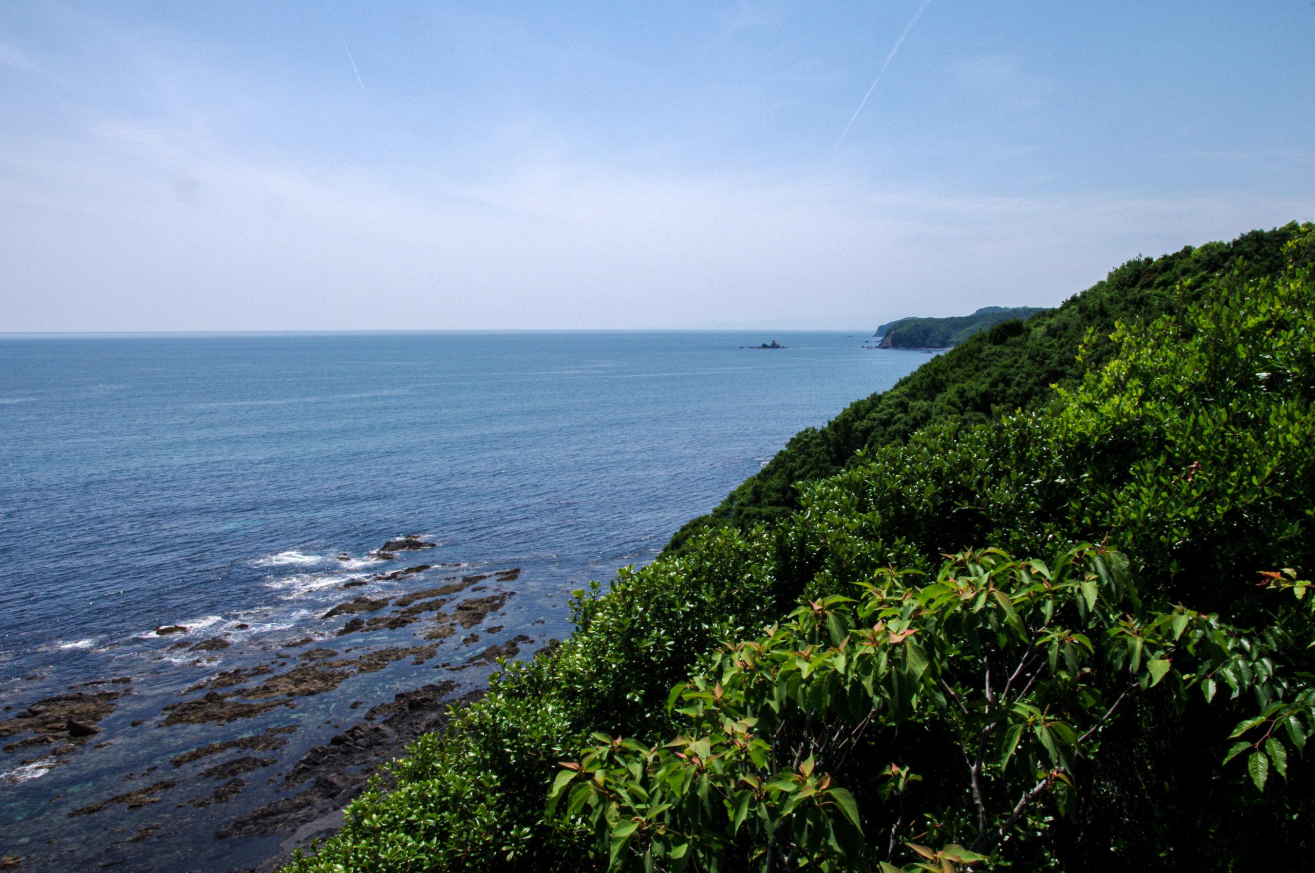 zeewier natuurgebied Ise-Shima, Japan